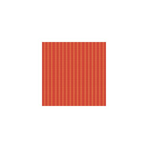 K & Company Papier- Small Wonders Boy Collection Red Plaid